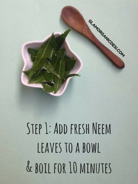 Neem Indian Lilac Herbal Hair Rinse Recipe, How to get rid of dandruff, dandruff remedies, how to get rid of dandruff fast, how to get rid of dandruff naturally, Indian Beauty Blog, Glamorganicdesi, Organic Beauty Blog, Indian Makeup Blog, Beauty Blogs, Dandruff, Skin Care, Beauty Tips, Hair Care, Natural DIY, Homemade Hair Mask, Best Hair Mask