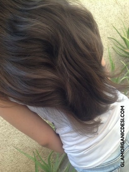 Long hair, Long hair tips, Best Homemade Anti Hair Loss Anti Dandruff and Frizz Control Hair Pack, Dandruff, Hair Loss, Frizzy Hair, Hair Growth, Hair Loss Treatment, How to grow hair, How to grow hair fast, Indian Beauty Blog, Indian Makeup Blog, Glamorganicdesi, Home remedies, Skin Care, Beauty Tips, Hair care